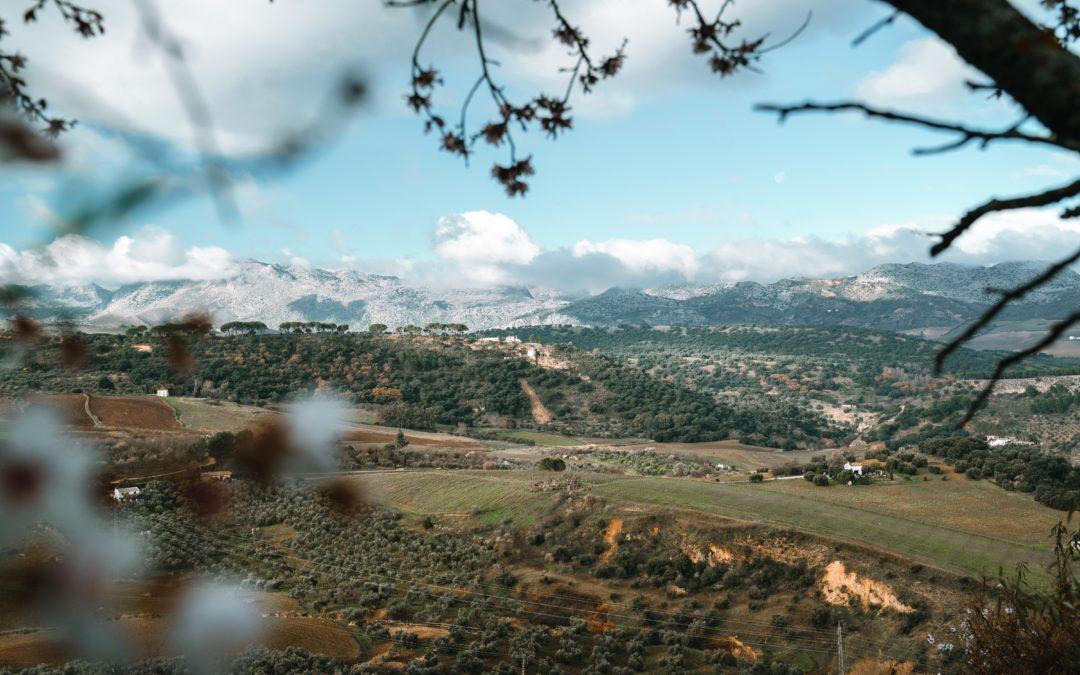 Wine Tourism – Sierras de Malaga DO