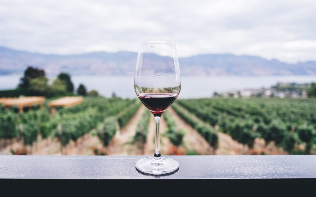Wine Tasting – A Fundamental Process