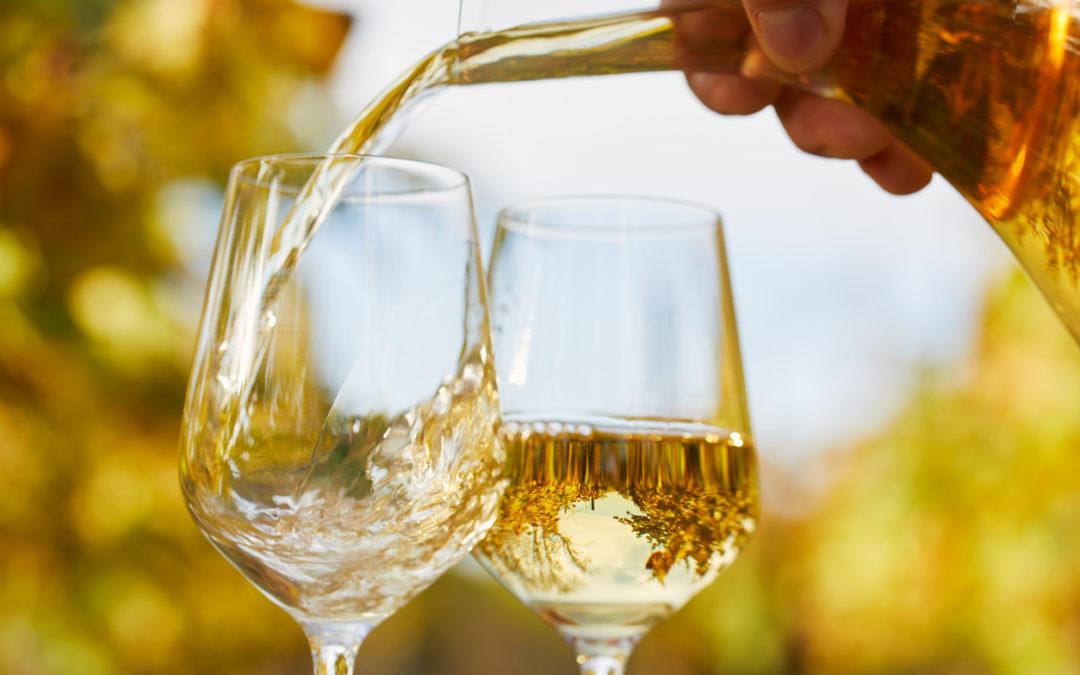 ¿Cómo disfrutar del vino en verano?
